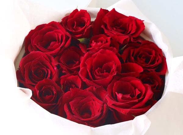 newbox_flora_red
